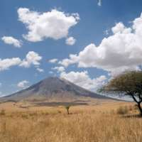 tanzania express safari>6 days