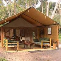 ishasha wilderness tented camp, queen elizabeth national park uganda