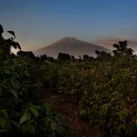 Kilimanjaro Climb Safari Marangu Route>5days>kili hike tours