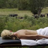 Safari Holiday south africa>12days> Natural Wonders of South Africa tour